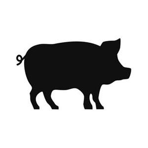 Hog Feed